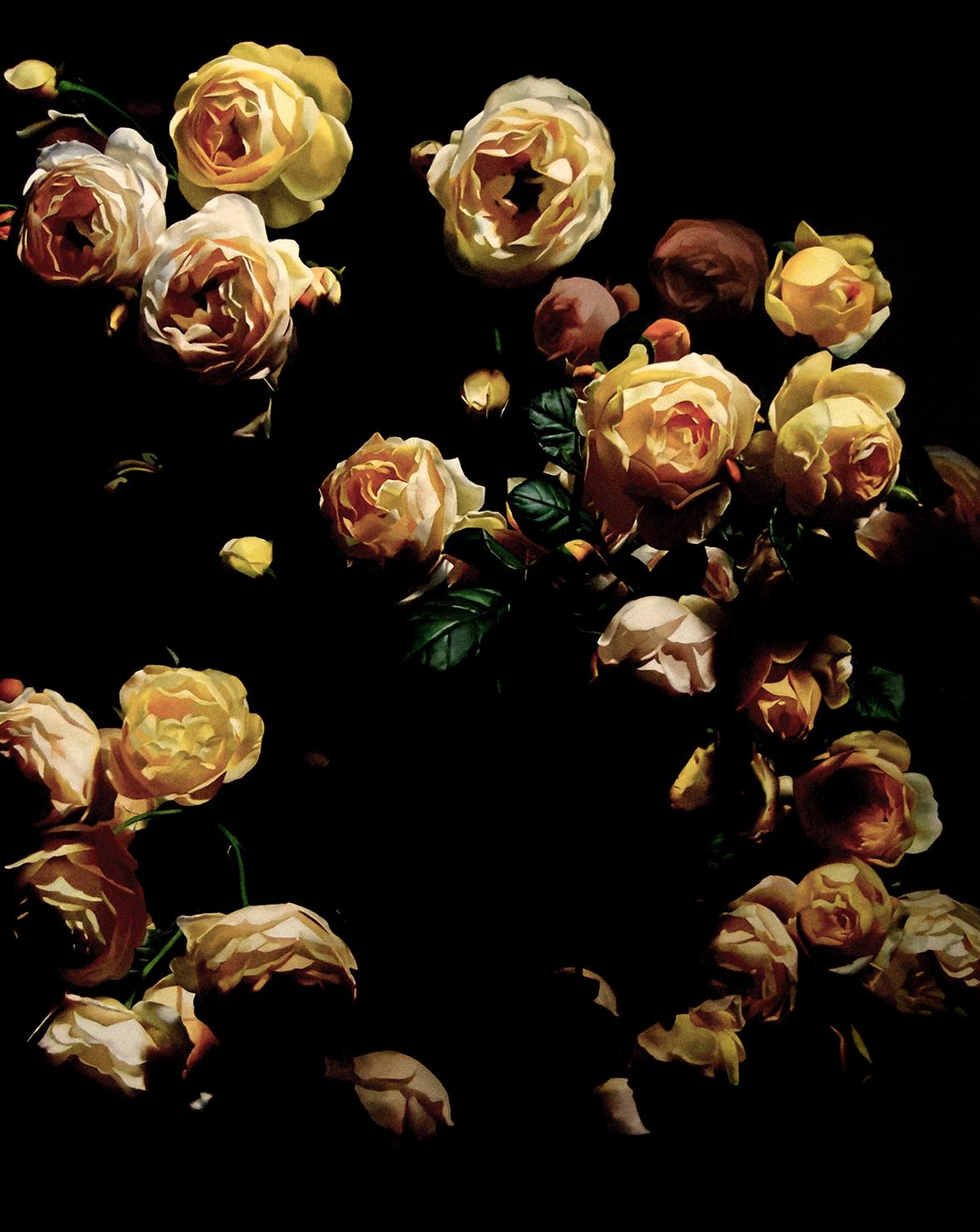 Roses #4