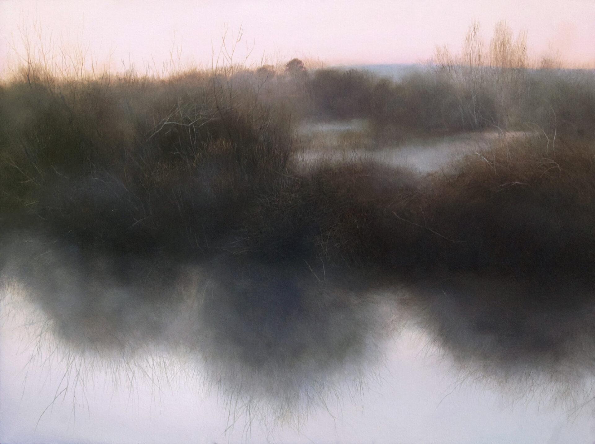 Wetlands 01